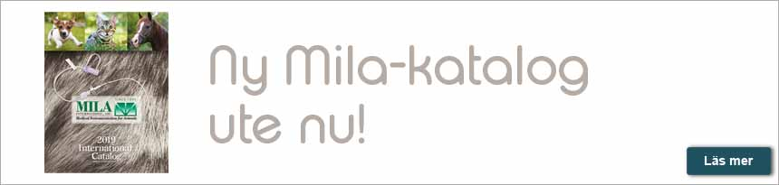 Mila katalog 2019 - Mila International Catalog 2019