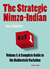 The Strategic Nimzo Indian Vol.1: A Complete Guide to the Rubinstein Variation