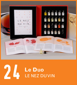 Nez du Vin 24 aromas of red and white wine