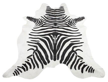 Kohud matta zebra
