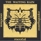 The Waiting Rain - Another Mental Earthquake