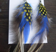 Cool feather earrings in blue.