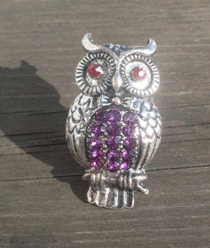 Cute owl ring.