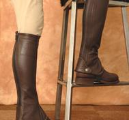 Short Chaps &quot;Levisto leggings de luxe&quot; &quot; fr TIB Horse
