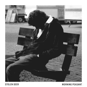 Stolen Deer - Morning Peasant