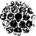 Bubbelplast Cirkel