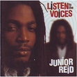 Junior Reid - Listen To The Voices