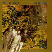 Wailing Souls - Wild Suspense