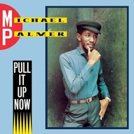 Michael Palmer ‎– Pull It Up Now