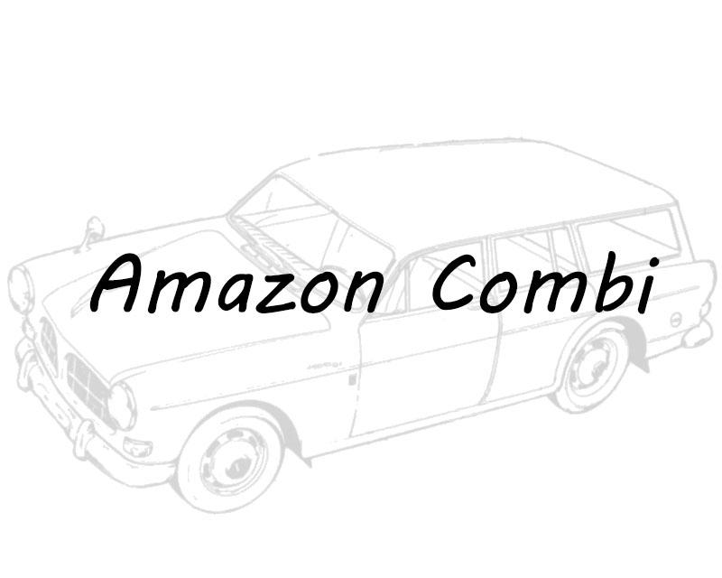 Amazon Kombi