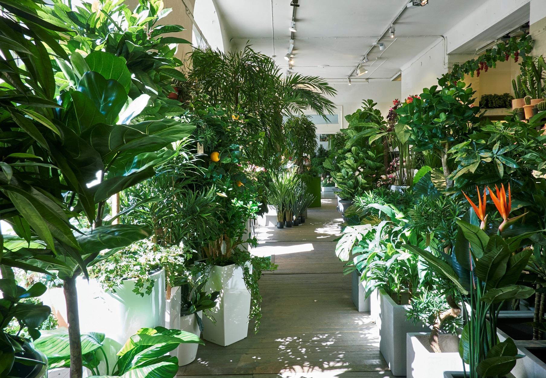 konstgjorda gröna växter