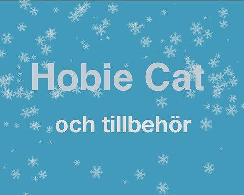 Lagerrea Hobie Cat