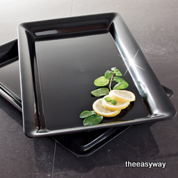 Disposable Party Tray. 1 piece