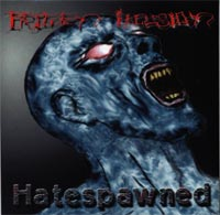 Frozen Illusion - Hatespawned [CD]