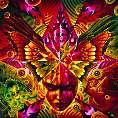 Cemetary - Phantasma [CD]