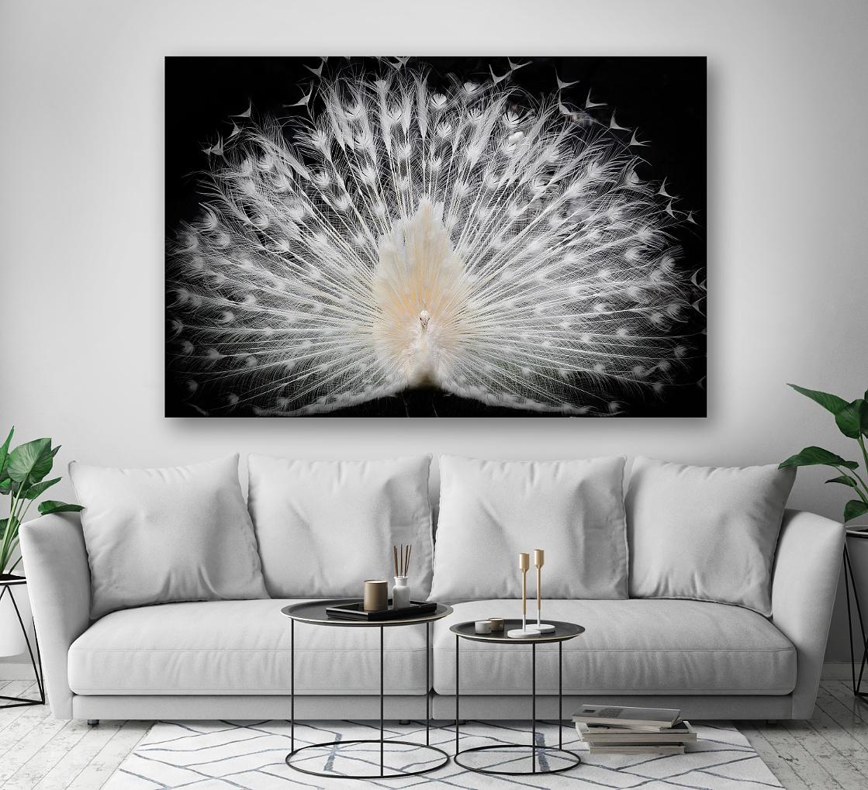 Sound-Absorbing Wall Art - Peacock