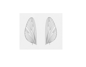 J:son Realistic Wing Material Mayfly