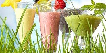 Slanka laktosfritt  Läckra och fylliga Slanka shakes