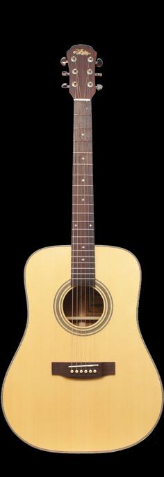 Akustisk gitarr, Aria 511, Dreadnought