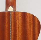 Akustisk gitarr, Aria 501, OM