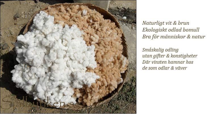 Ekologisk naturligt färgad bomull