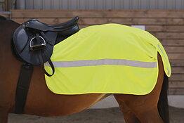 Reflexer - hästen