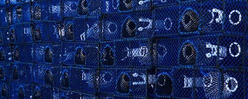 Tillverka din egna bur/tina  Specialtillverkad för ert behov