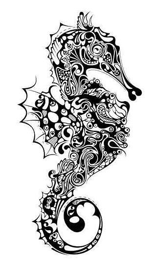 Katzelkraft - Seahorse
