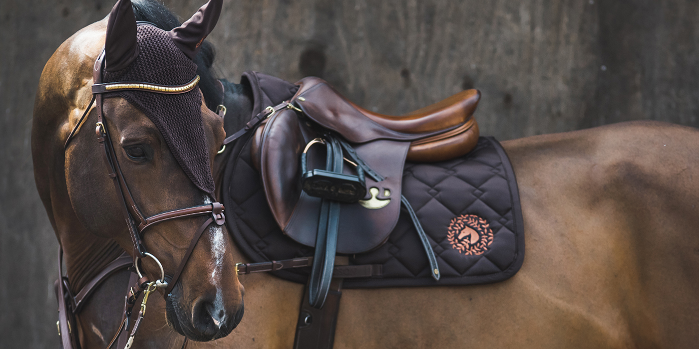 JACSON   Equestrian & Horse Equipment