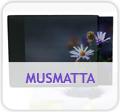 Musmatta