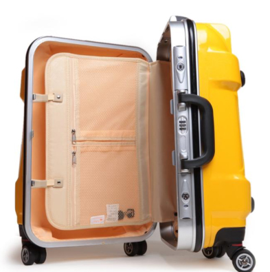 "trolley ""bagage"""