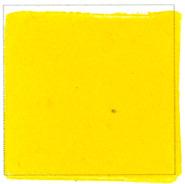 Lemongul 1151