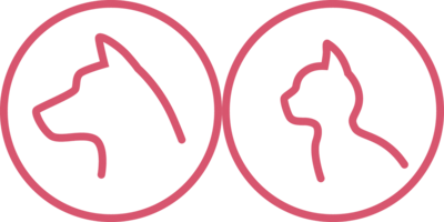 Struktur i hudutredningen- Praktisk dermatologikurs.