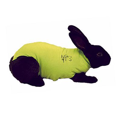 Medical Pet Shirt ljusgrön Kaninbody 2XS /st