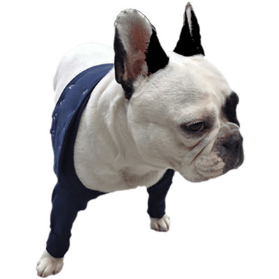 Medical Pet Shirt dubbla frambensskydd M /st
