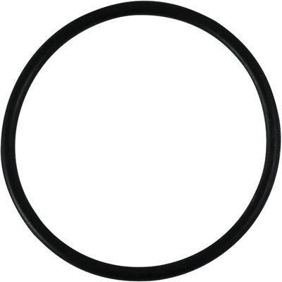 O Ring stor till Bernerventil /st