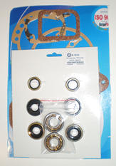 Renovation kit Sachs 2 gears