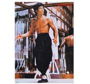 Bruce Lee Poster, 52x37 cm