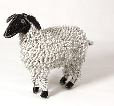 Sheep, large