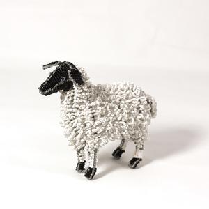 Sheep, small