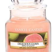 Delicious Guava, Small Jar, Yankee Candle