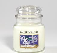 Midnight Jasmine, Medium Jar, Yankee Candle