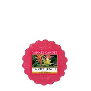 Tropical Jungle, Vaxkaka, Yankee Candle
