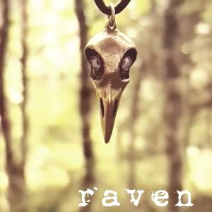 Cool raven skull in bronze