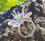 blomring - rallarros i silver