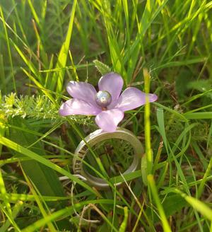 miracles Ring