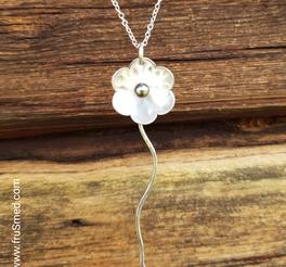 Silverflower