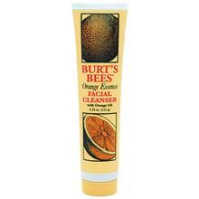 Burt's Bees Facial Cleanser 120g