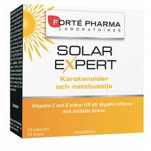 Solar Expert 28st