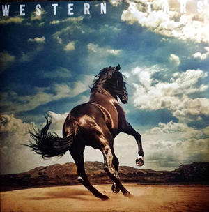 Bruce Springsteen ‎– Western Stars /  Columbia